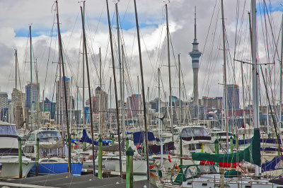 Best accommodation options auckland